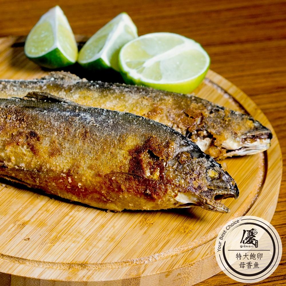 飽卵母香魚_老饕特大香魚 (8隻/1kg)【水產優】